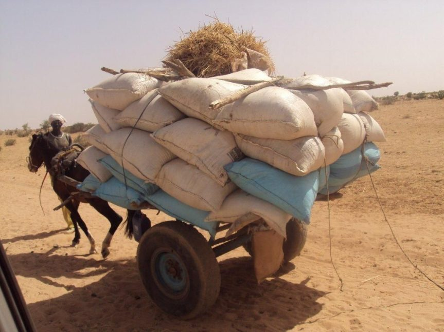 Lessons from the international response to the Sahel 20[...]
