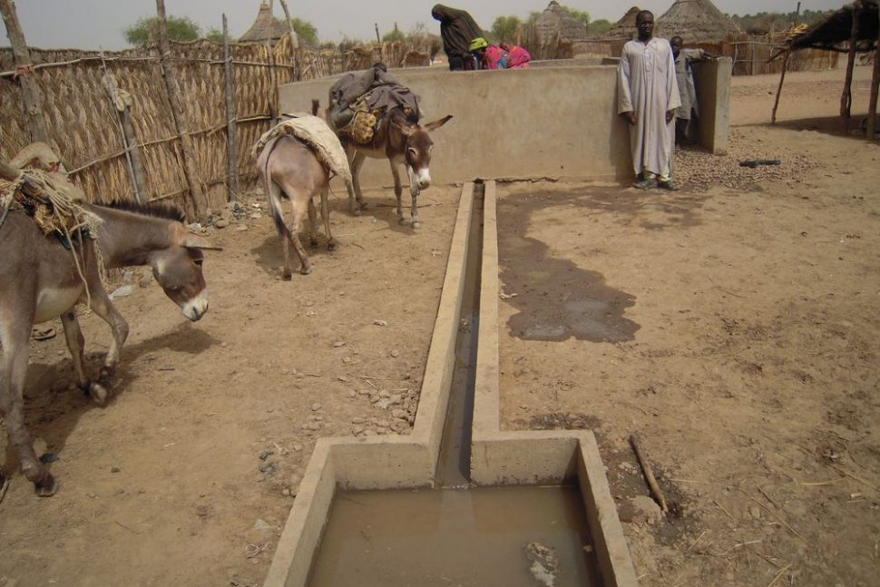 LRRD Tchad