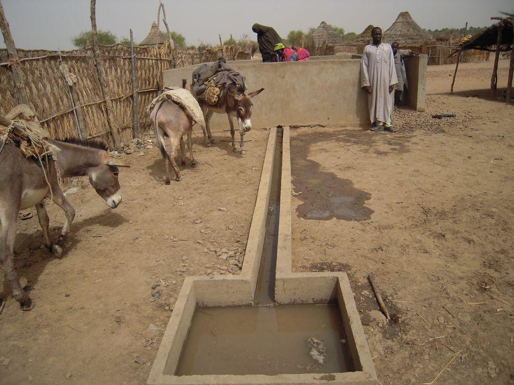 Évaluation à mi-parcours du projet LRRD au sud du Tchad[...]