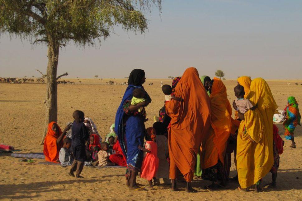 DFID Sahel