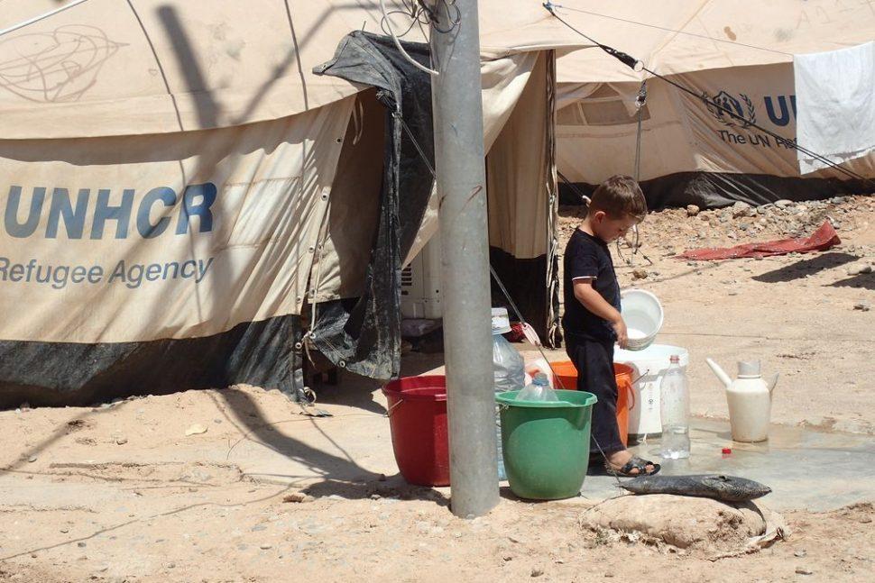ECHO crise syrienne