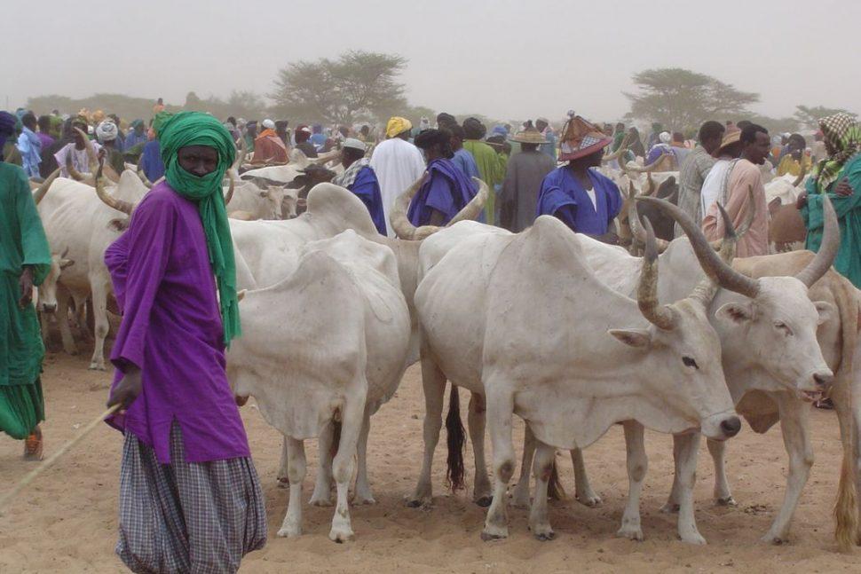 PAM Sénégal