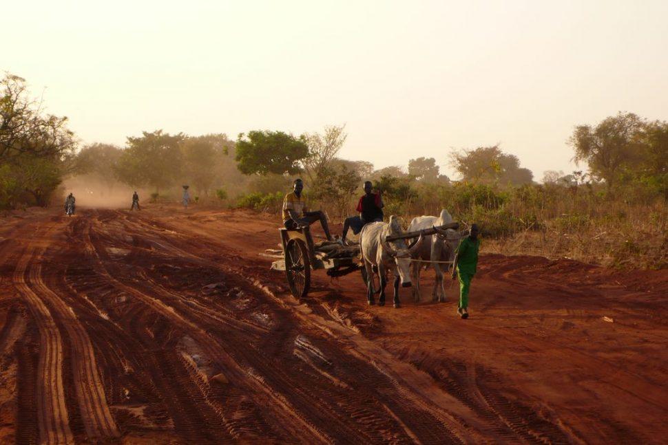 Video Dakar