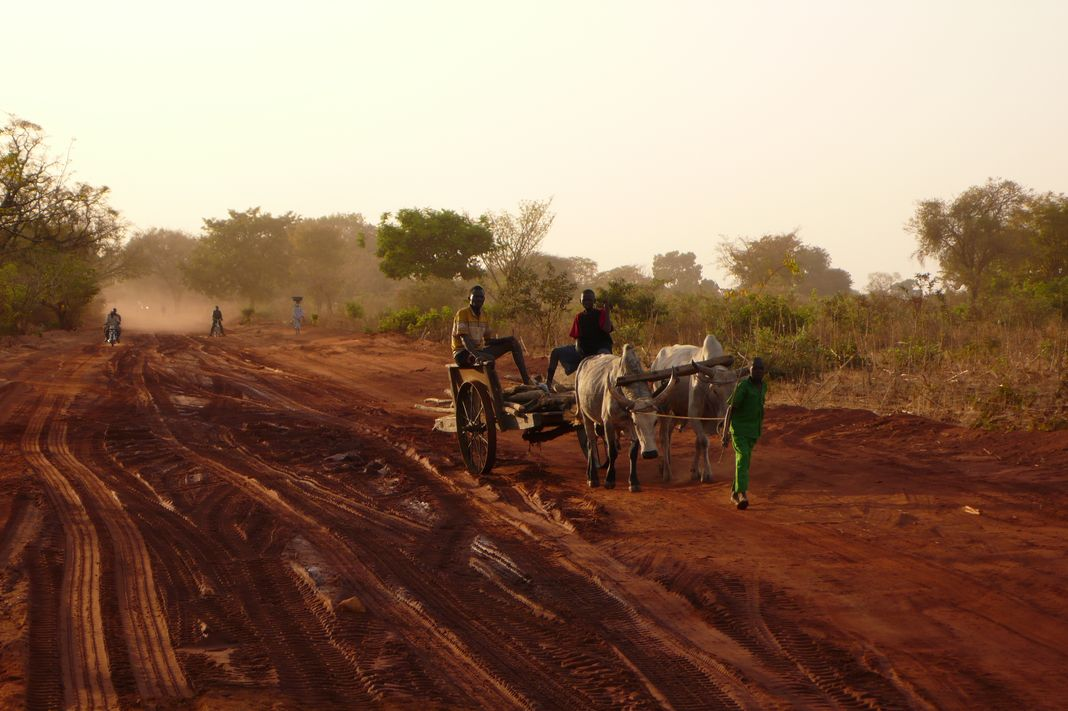 Video of exchange of experiences in the Sahel and Horn[...]