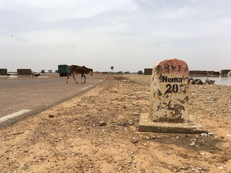 Évaluation des impacts socio-économiques des réfugiés m[...]